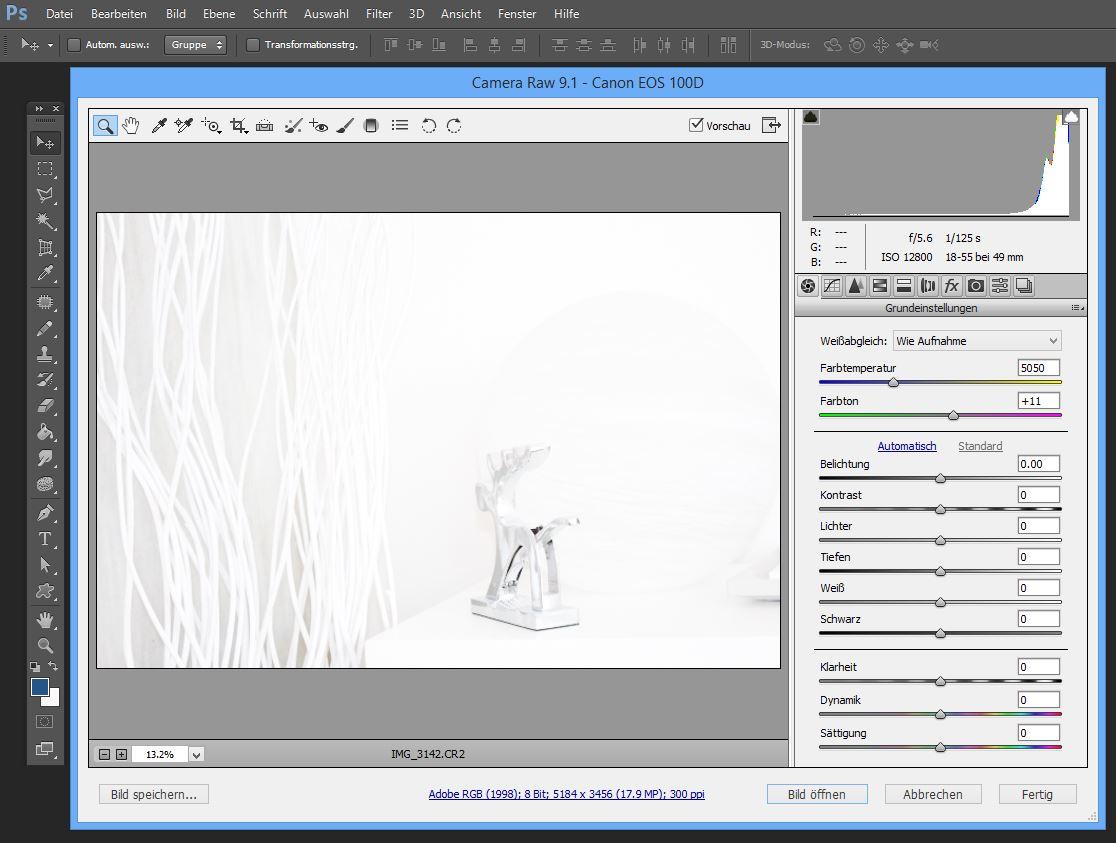 RAW entwickeln Photoshop