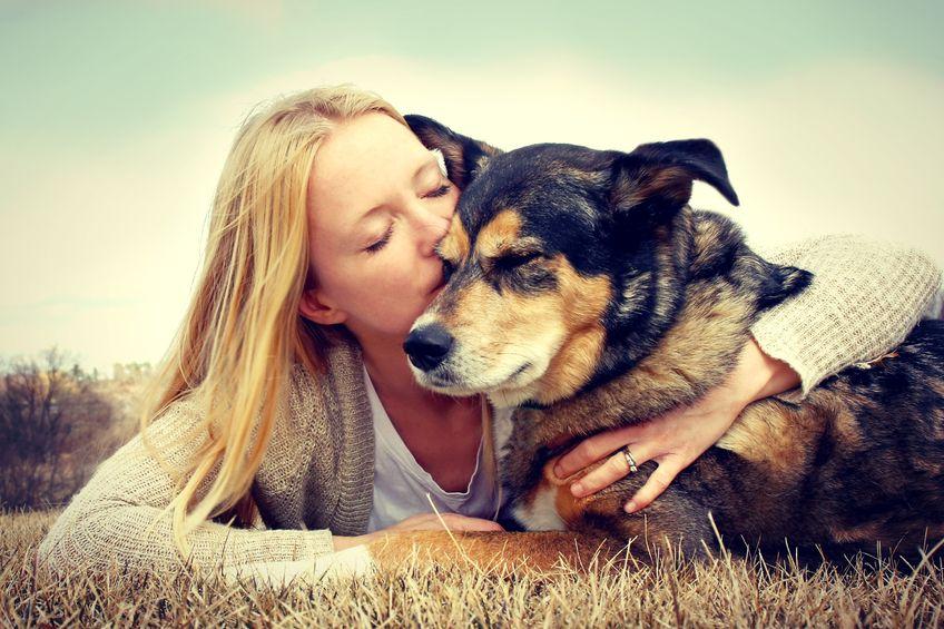 tierfotografie tier fotoshooting hund mit halter