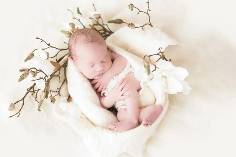 baby fotoshooting babyfotograf babyfoto