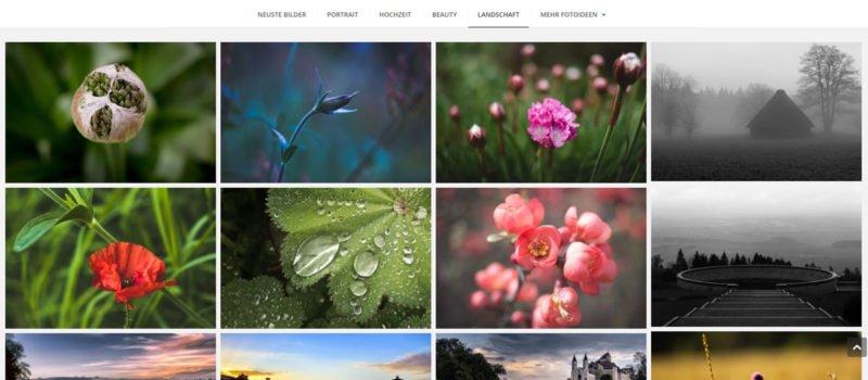 fotografie-website bilder kategorisieren
