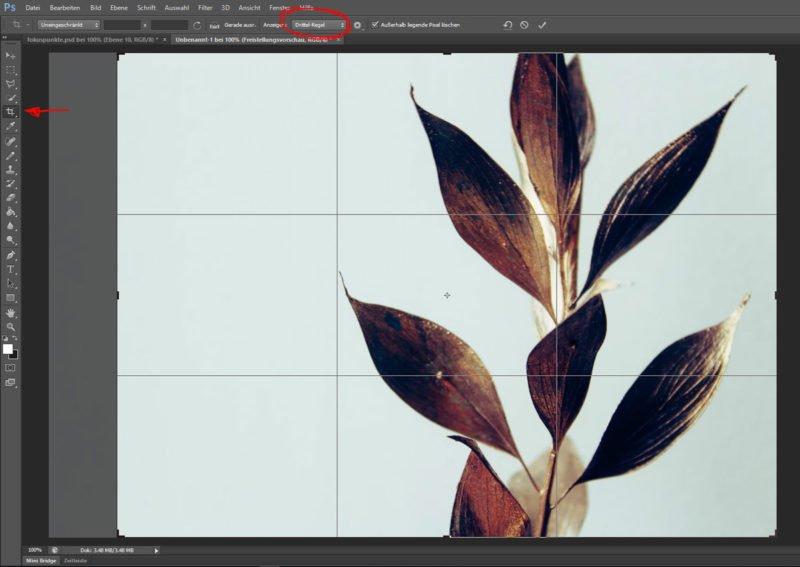Photoshop Drittelregel Funktion anwenden