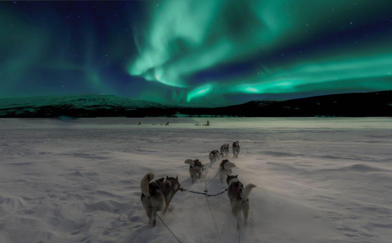 Polarlichter fotografieren Hundeschlitten