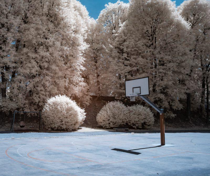 IR-Fotografie Bäume