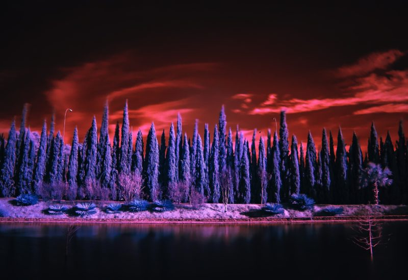 Infrarotfotografie Wald Himmel