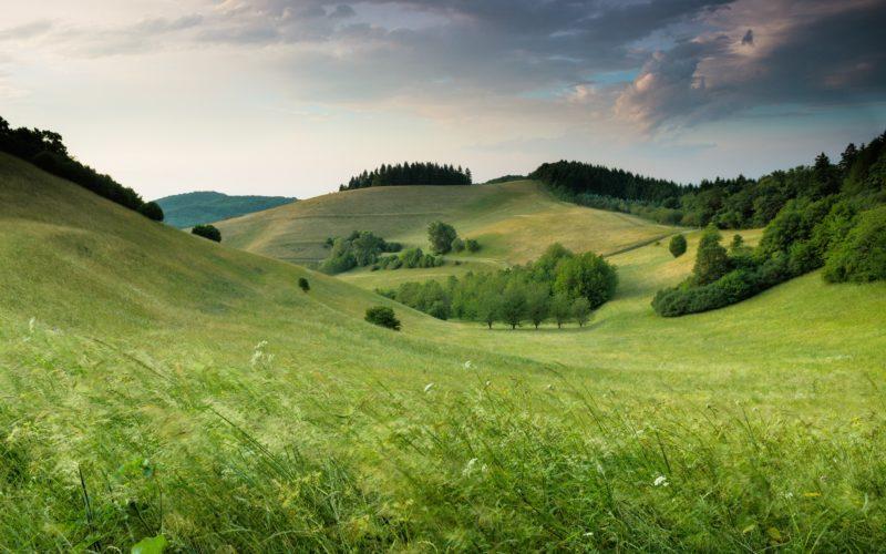 Minimalismus Fotografie Wiese Landschaft