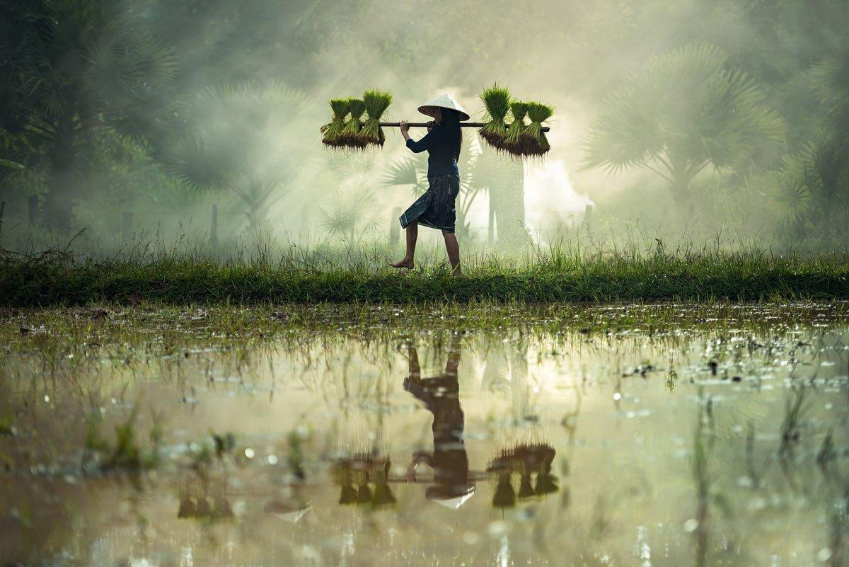 Balance Gleichgewicht im Bild