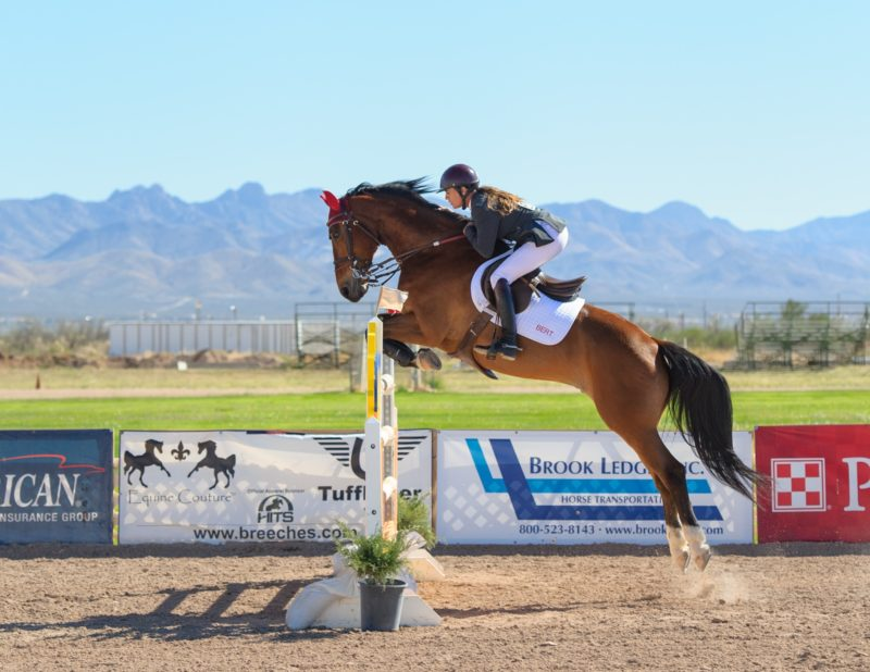 Pferdefotografie Hochsprung