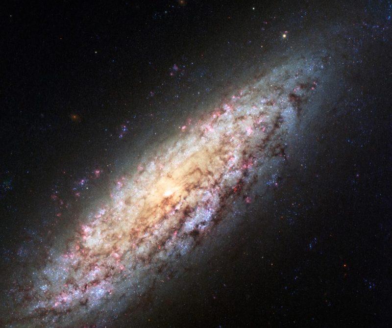 Einsame Galaxie NGC 6503