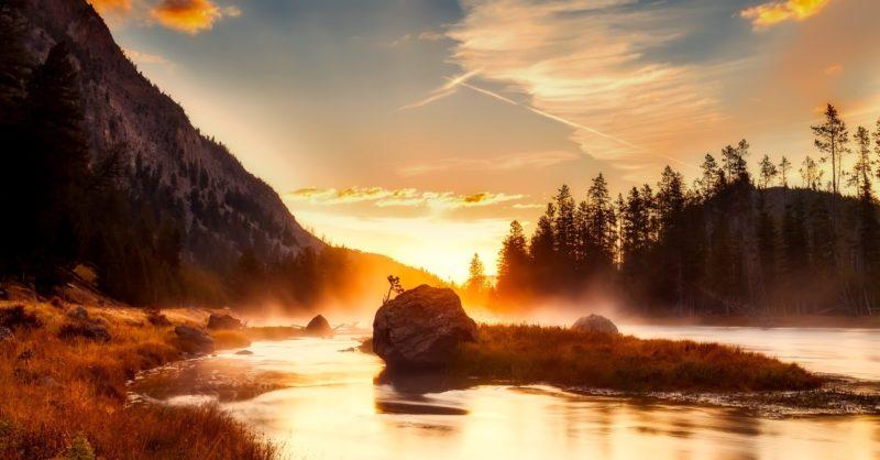 sonnenaufgang fotografieren morgendämmerung im wald