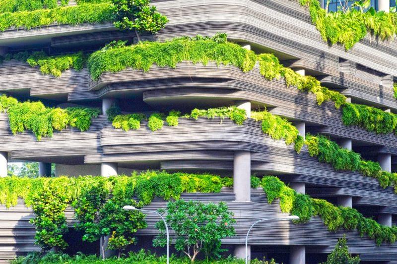 Gebäude mit Pflanzen