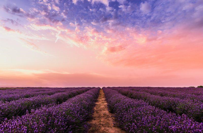 Offenes Feld Sonnenuntergang Fotografie Tipp einfache Farben