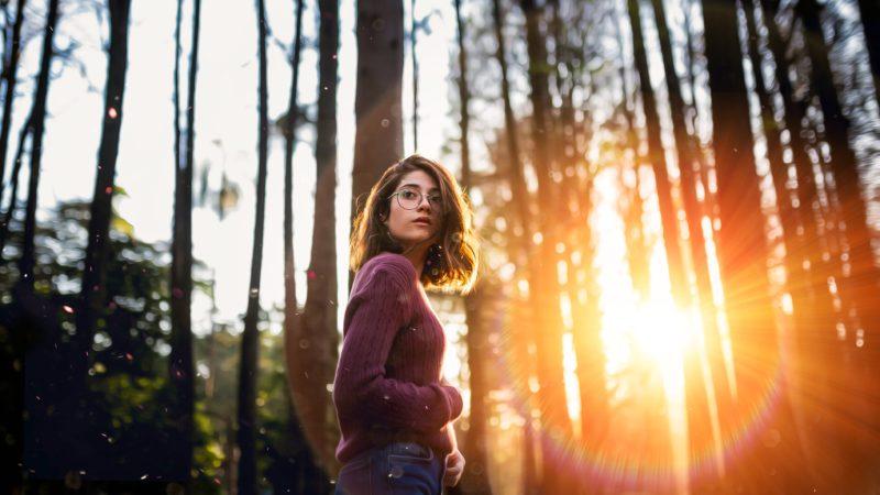 Gegen die Sonne fotografieren im Wald mit Lens Flare