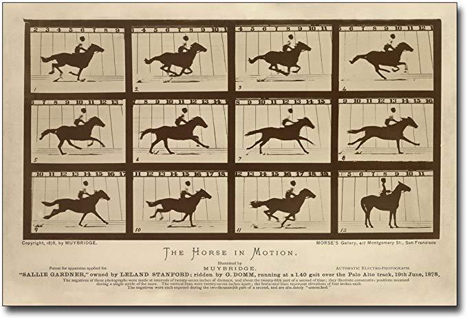 beruehmte fotos von einem mann der ein pferd reitet