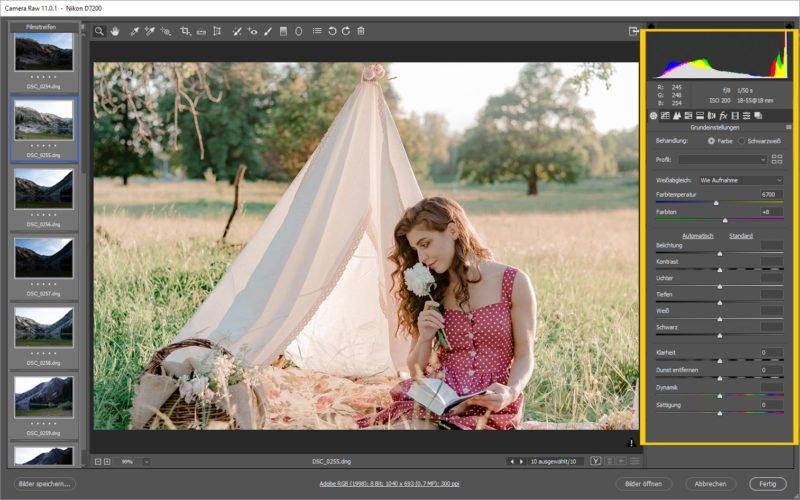 Adobe Camera Raw Plugin