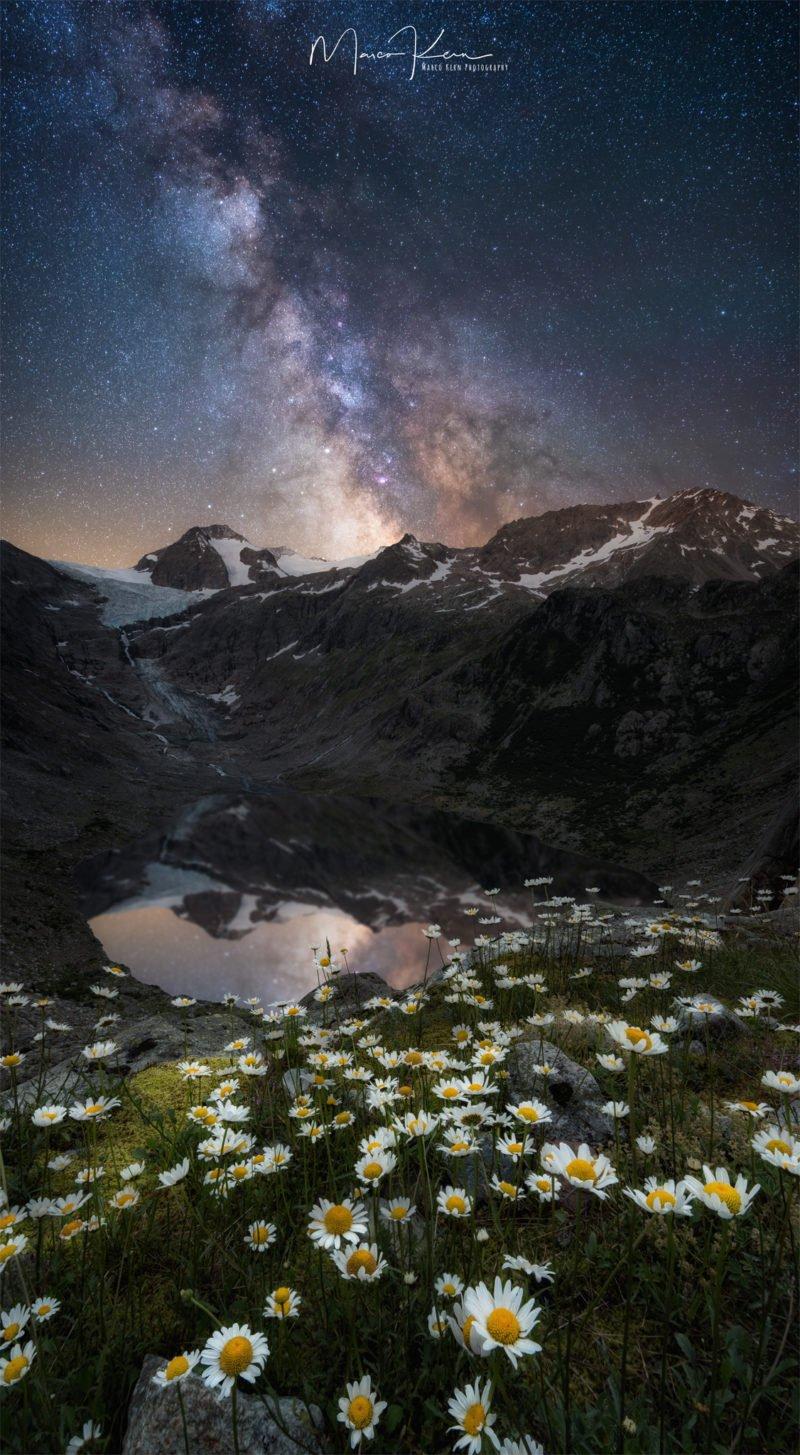 berglandschaft und nachthimmel mit blumen im vordergrund