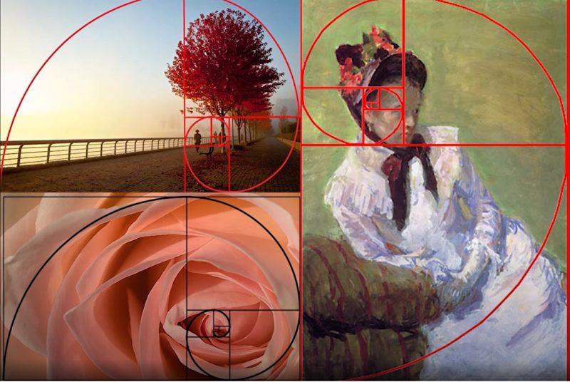 fibonacci foldener schnitt fotografie