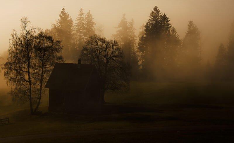 haus am waldrand in nebel und dunkelheit gehuellt