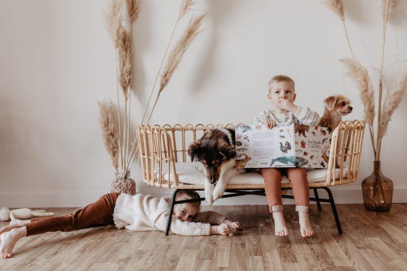 kinder spielen auf sitzbank mit den hunden