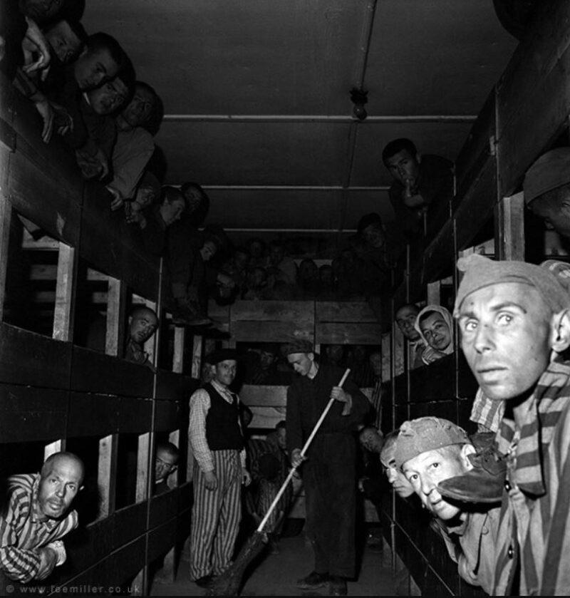 Lee Miller Kriegsfotografin Kriegsfotografie