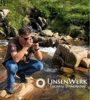 Fotograf LinsenWerk
