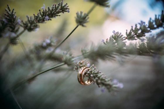 fotograf neu isenburg deutschland freischriftfotografie | pixolum