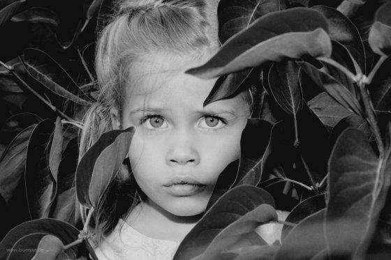 fotograf muelheim an der ruhr deutschland bluenika photography | pixolum
