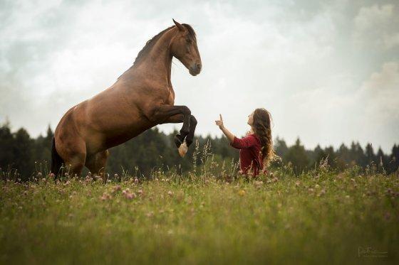 fotograf niedermuhlern schweiz peymann | pixolum