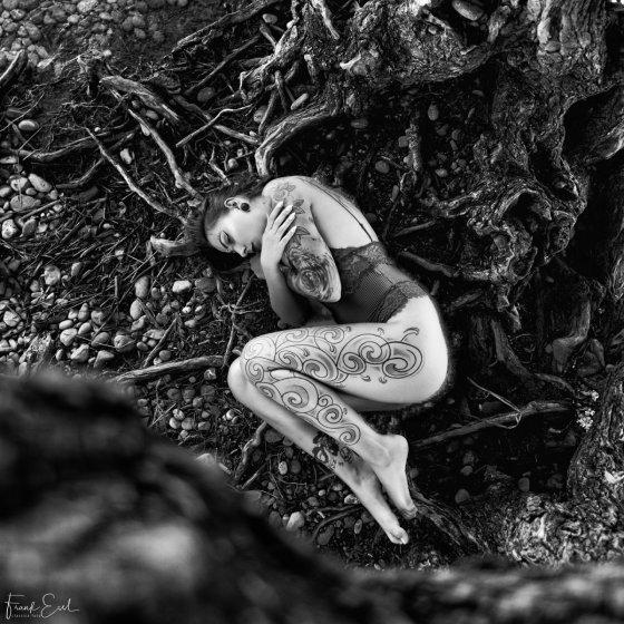 fotograf rheineck schweiz classica foto by frank essl | pixolum