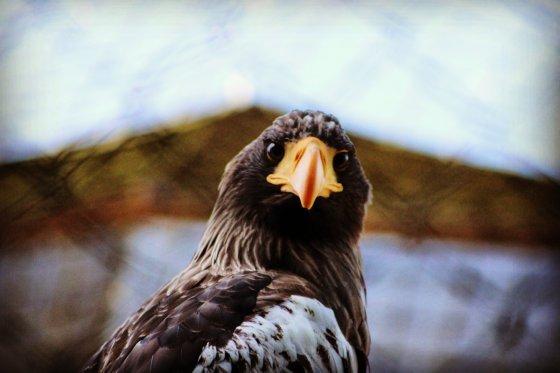 fotograf rodewald deutschland stefanie richter | pixolum