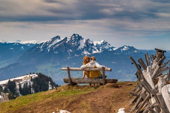 fotograf arth schweiz nealas_goldenfotografie | pixolum