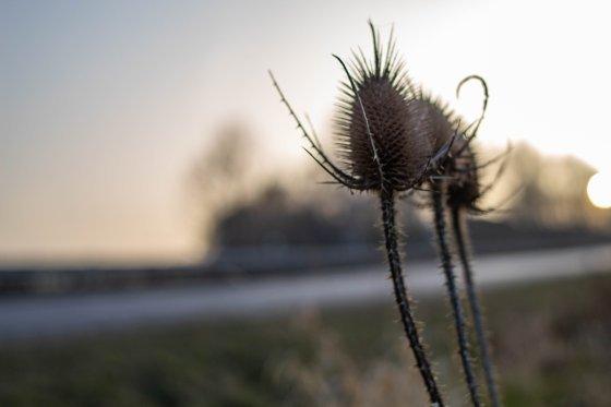 fotograf chemnitz deutschland thomas fuchs | pixolum