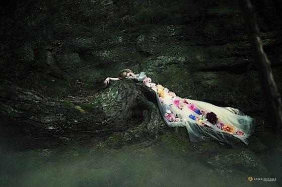 fotograf alsdorf deutschland efgee pictures photography   pixolum