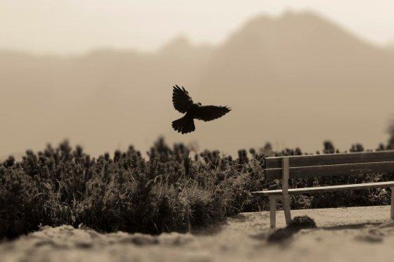 fotograf neustift im stubaital oesterreich stenstudio | pixolum